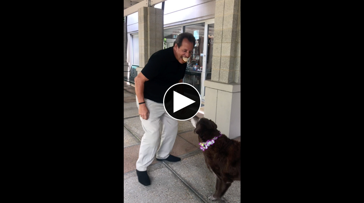 Q&A Blog International Dog Day Cupcake Recipe | Earl Feeding Jaz