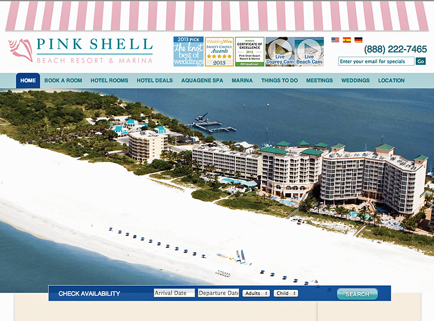 Hotel Website Design Agency Creative | Pink Shell
