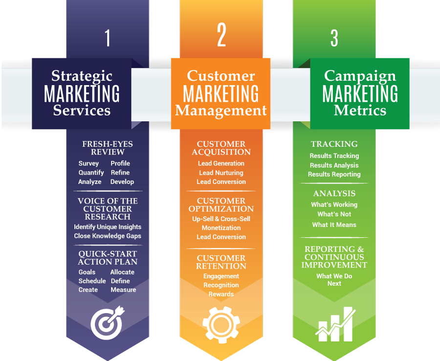 Infographic of Quenzel Marketing Agency Services, Fort Myers. Florida