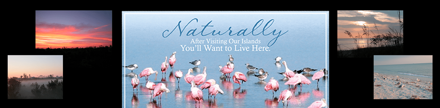 Realtor Marketing Agency | Sanibel Island, Florida