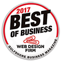 2017 Best Website Design Firm Award