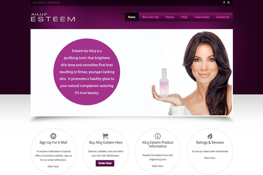 Quenzel Retail Website Design Agency - Ailuj